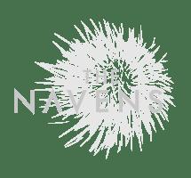 logo_the_navens